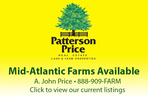 Patterson Price