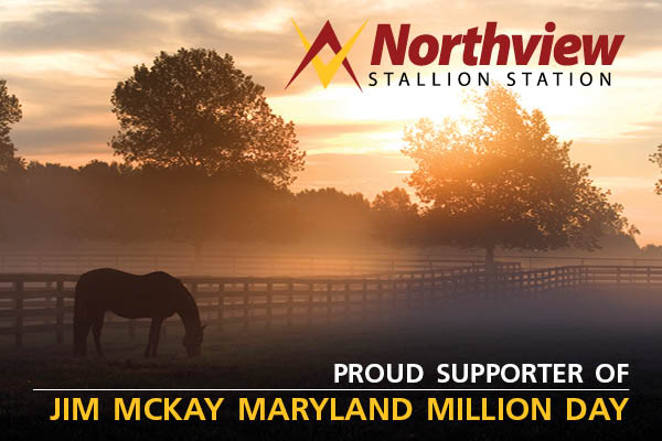 Northview Stallion Station
